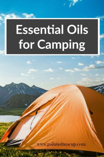 Essential oils for camping! A list of oils to take on your next trip, diy bug spray and itch stick recipes and safety tips!