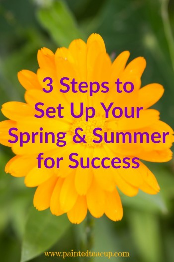 3 Steps to Set Up Your Spring & Summer for Success and a printable worksheet to help!