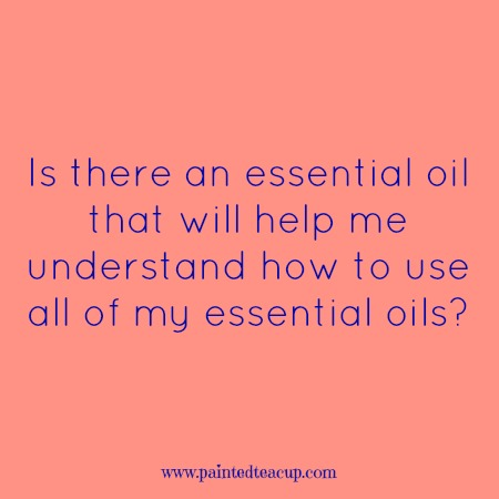 Is there an essential oil that will help me understand how to use all of my essential oils? Essential oil lovers you are sure to love!