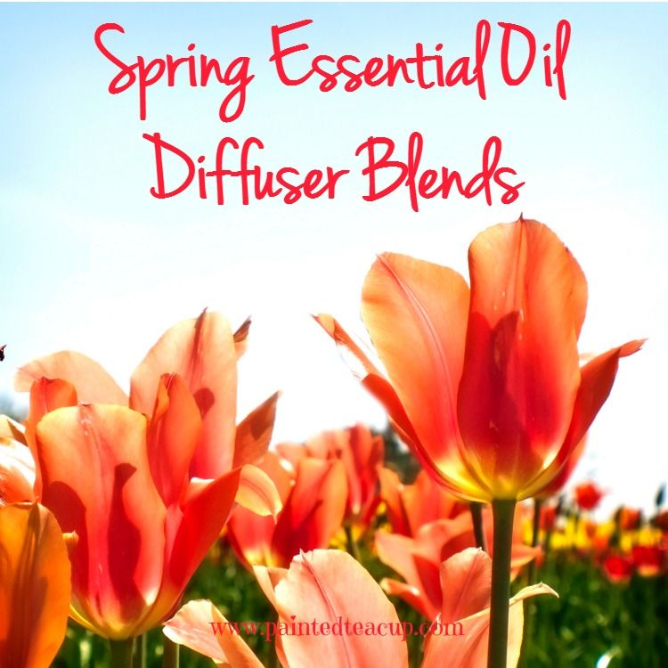 With Spring just around the corner, here are 5 Spring Essential Oil Diffuser blends to make you smile!