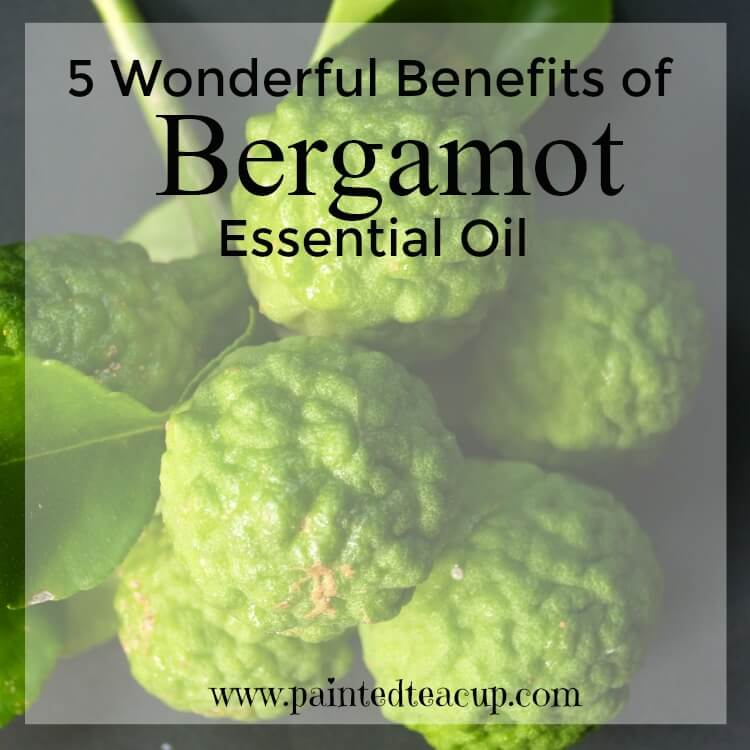 Here are 5 wonderful benefits of bergamot essential oil including benefiting mood, helping with skin irritations, aiding in digestion & more!