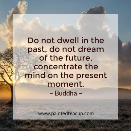 Do not dwell in the past, do not dream of the future, concentrate the mind on the present moment. - Looking for quotes to bring you hope and inspiration? I've got you covered with these beautiful and insightful Buddha quotes!