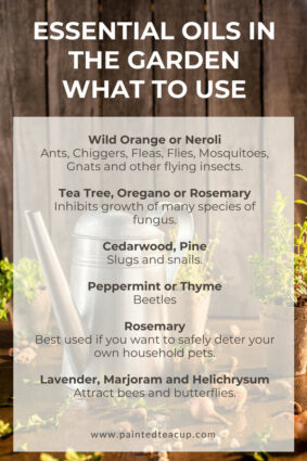 how to use essential oils for pest control, There are so many great ways to use essential oils in the garden! Learn about 5 great benefits, essential oils for pest control and practical uses!