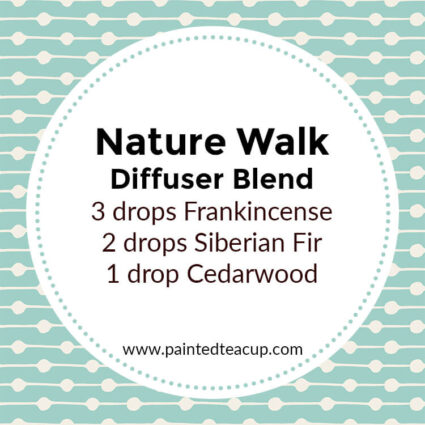 Nature Walk Diffuser Blend, If you LOVE frankincense essential oil then I have you covered! Here are 25 amazing frankincense diffuser blends to make your home smell wonderful!