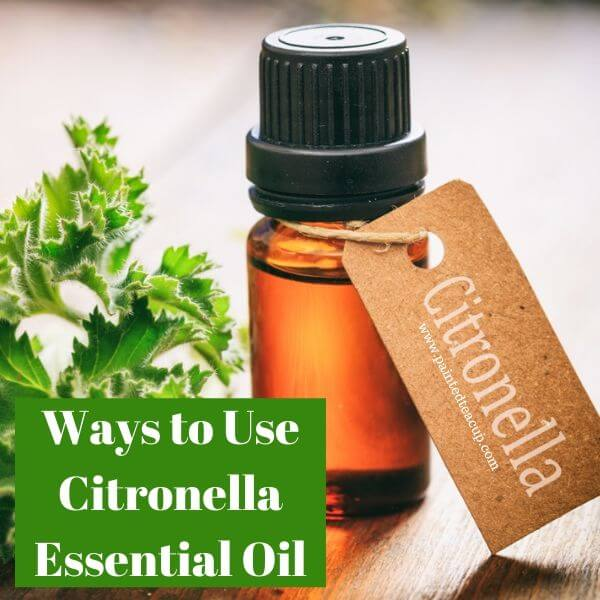 7 easy ways to use citronella essential oil. Citronella is a wonderful new oil from doTERRA - use it for skin care, relaxation, pest control & more #citronellaessentialoil